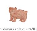 熊的彩色鉛筆素描 75589203