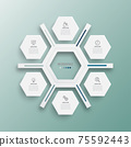 Vector illustration infographics 6 options. Template for brochure, business, web design. 75592443