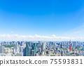 【도쿄】 롯폰기 힐즈에서 보이는 도쿄 타워와 스카이 트리 75593831