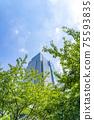 【도쿄】 상쾌한 초록에 둘러싸인 도쿄 미드 타운 75593835