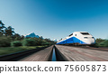 High speed passenger train. Passenger train driving on railroad in forest. 3d illustration 75605873