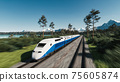 Train moves along the forest. High speed passenger train. 3d illustration 75605874