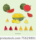 手繪西瓜,紅色西瓜,矢量圖 75629891