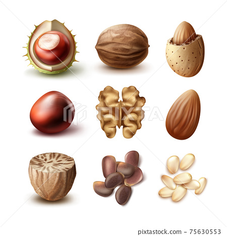 Set of different nuts 75630553