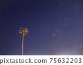 棕櫚樹和獵戶星座 75632203