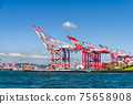 view of the container cranes in the port of Kaohsiung, Taiwan. 75658908