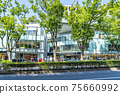 【도쿄】 상쾌한 초록이 퍼지는 오모테 산도 힐즈 주변 75660992