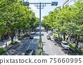 【도쿄】 여름의 녹색이 아름다운 오모테 산도 75660995