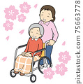 Cherry-blossom viewing 75663778