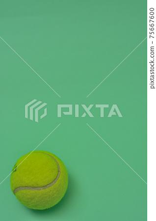 網球 75667600