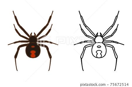 Pest single redback spider illustration 75672514