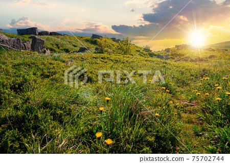 mountain meadow at sunset. cloud rolling above the hill with rocks among the grass in evening light. warm summer weather. beauty of carpathian landscape in green and blue 75702744