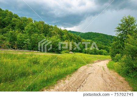 dirt road through forested countryside. beautiful summer rural landscape in mountains. adventure in nature scenery before the storm 75702745