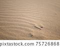 모래 모래 모래의 모양 ~ 하나의 나뭇 가지 75726868