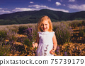 The little girl collects flowers on a lavender field 75739179