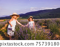 Two little sisters collect lavender flowers in a field near the village 75739180