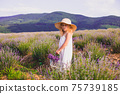 The little girl collects flowers on a lavender field 75739185