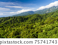 Beautiful green forest in the mountains with the blue sky background 75741743