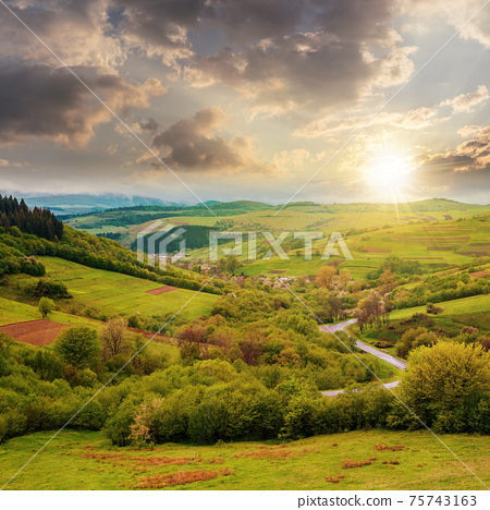 carpathian countryside in spring at sunset. beautiful rural landscape in mountain. wet grassy meadow in evening light. road winding through valley to village. distant ridge in the clouds 75743163