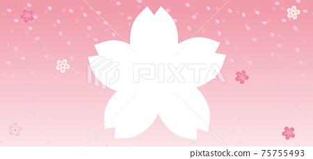 春天的圖像中的櫻花剪影人物空間背景橫幅背景櫻花Fubuki水平寬 75755493