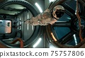 An astronaut in zero gravity checks the module of his spaceship. 3D Rendering. 75757806