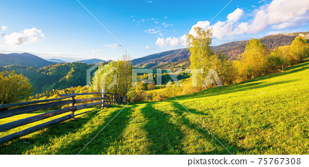 trees behind the fence on the grassy meadow. spring rural landscape in evening light. distant mountain ridge beneath a bright sky with fluffy clouds 75767308