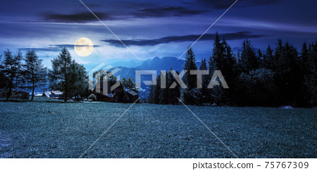 rural landscape in tatra mountains at night. spruce trees on the  grassy meadow. beautiful nature scenery in full moon light. clouds above the distant ridge 75767309