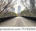 Yoyogi Park Pedestrian Bridge National Yoyogi Stadium 75769066