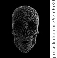 Metalwork Of Carved Human Skull 75769630