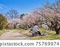 兩名高級婦女在一個公園裡吃午餐,公園裡盛開著春天的梅花。 75769974