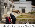 父母和孩子在春天東山動物園看黑犀牛 75769976