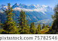 French Alps and Chamonix Valley 75782546