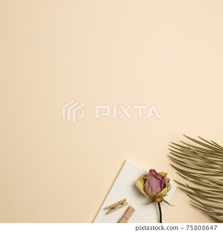 Notebook, wooden clip, dry rose and leaf on beige background. flat lay, top view, copy space 75808647