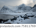 The magic of nature in Lofoten during winter 75811769