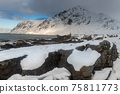The magic of nature in Lofoten during winter 75811773