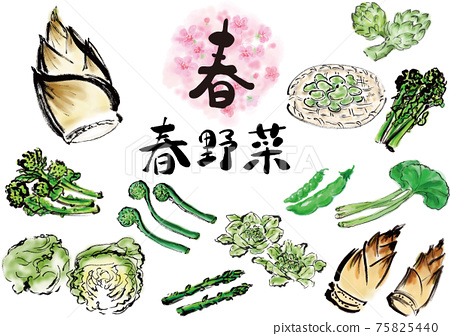 春季蔬菜套裝手繪 75825440