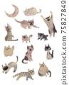 고양이의 집회 75827849