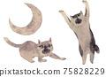 싸우는 고양이 75828229