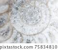 炸藥化石背景材料 75834810