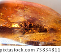 天然石材琥珀色背景素材 75834811
