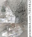天然石材養蜂石簇背景材料 75834812