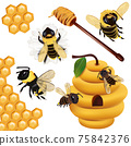Set Honey bee, wasp, bumblebee, honeycomb, beehive, honey dipper with honey on white background. 3d Vector icon 75842376