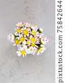 Beautiful daisy flowers in ceramic white vase on ultimate gray background from above 75842644
