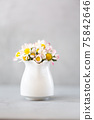 Beautiful daisy flowers in ceramic white vase on ultimate gray background 75842646