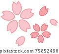 Cherry Blossoms 75852496