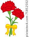 Carnation 75852502