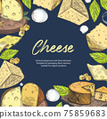 Set of different images of cheese. Pieces of cheese. Vintage graphics. 75859683