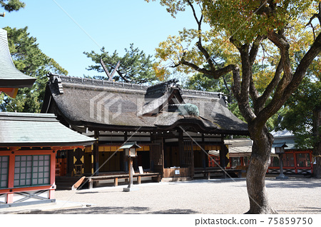 吉通 住吉大社 神殿 75859750