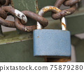 Close up of blue padlock with rusty chain locked at old green gate door, selective focus 75879280