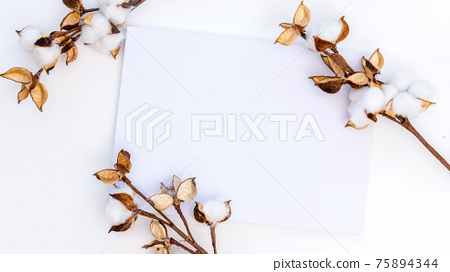 White paper and three sprigs of cotton 75894344